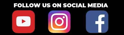 Blu Frenchibles Social Media
